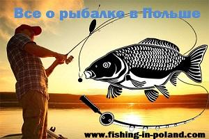 Все о рыбалке в Польше