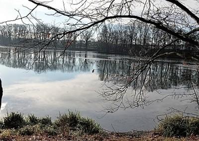 призамковый пруд