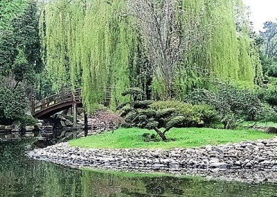 японский сад в парке Szczytnickim