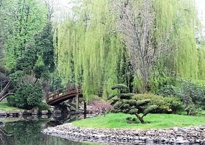 Японские сады во Вроцлаве