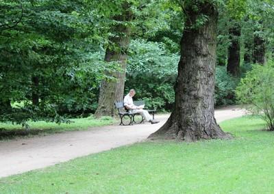 Лазенский парк-прекрасное место что бы собраться с мыслями