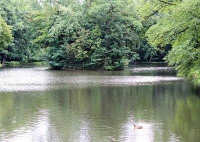 Релаксация в Лазенском парке