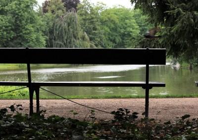 Лазенский парк- прекрасное место для уединения