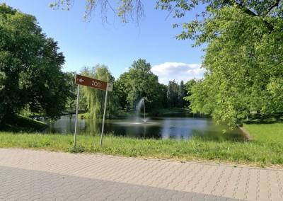 Прекрасные парки