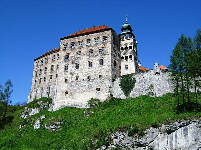 Королевский замок в Песковой Скале