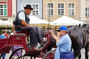 польский язык для туриста